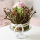rosa Primeln mit Moos und Zweigen umwickelt