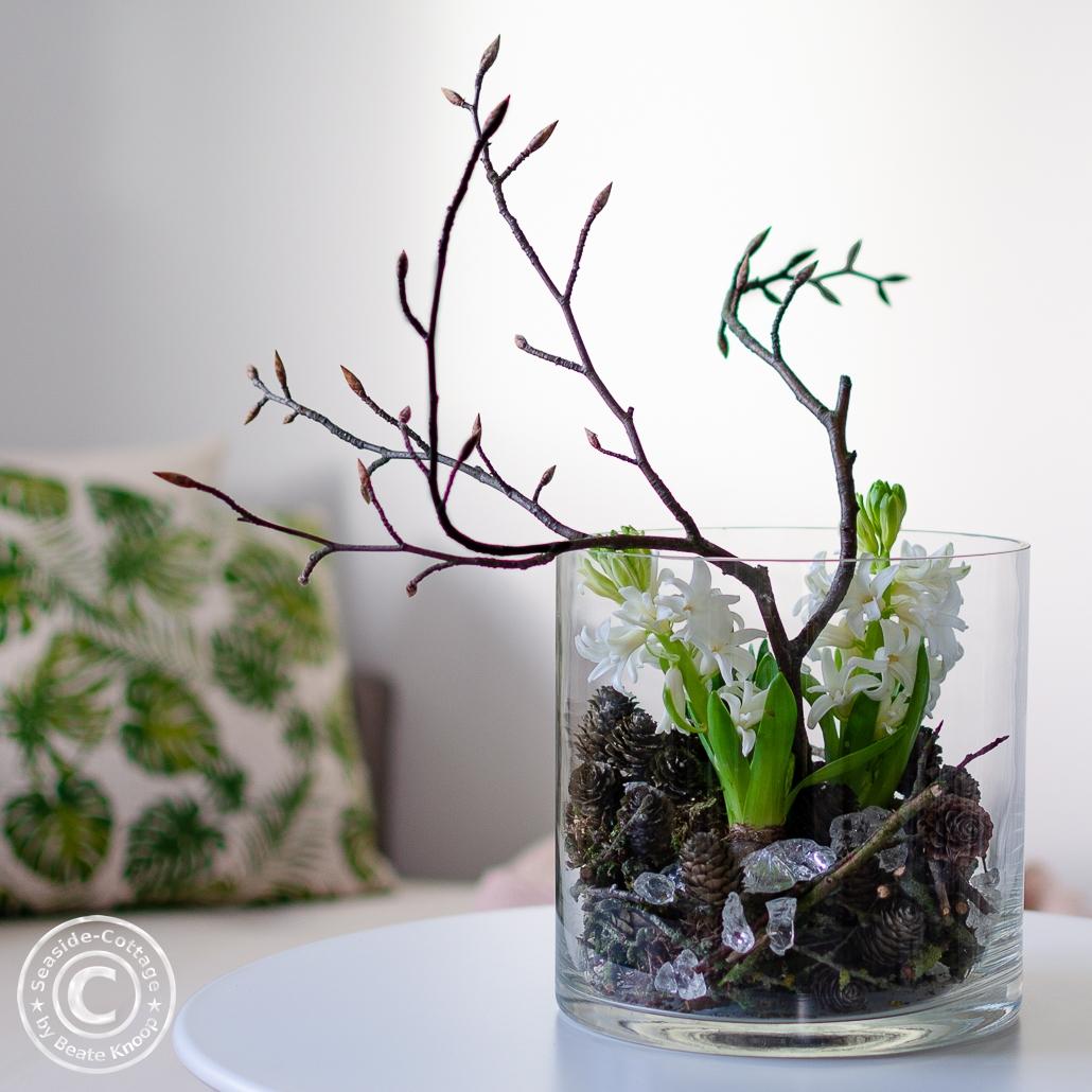 Hyazinthen dekoriert in einem Glas mit Zapfen, Zweigen und Glasbrocken