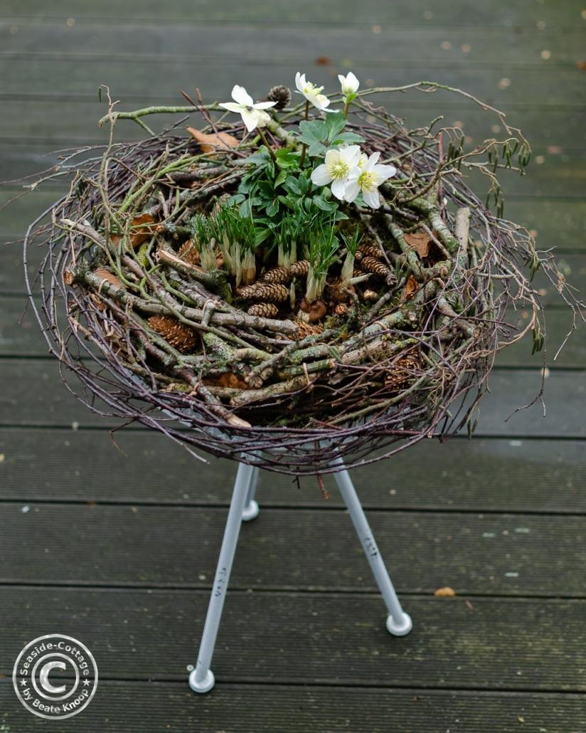 Kranz aus Ästen und Zweigen bepflanzt mit Christrose und Krokussen, dekoriert auf einem kleinen Tisch
