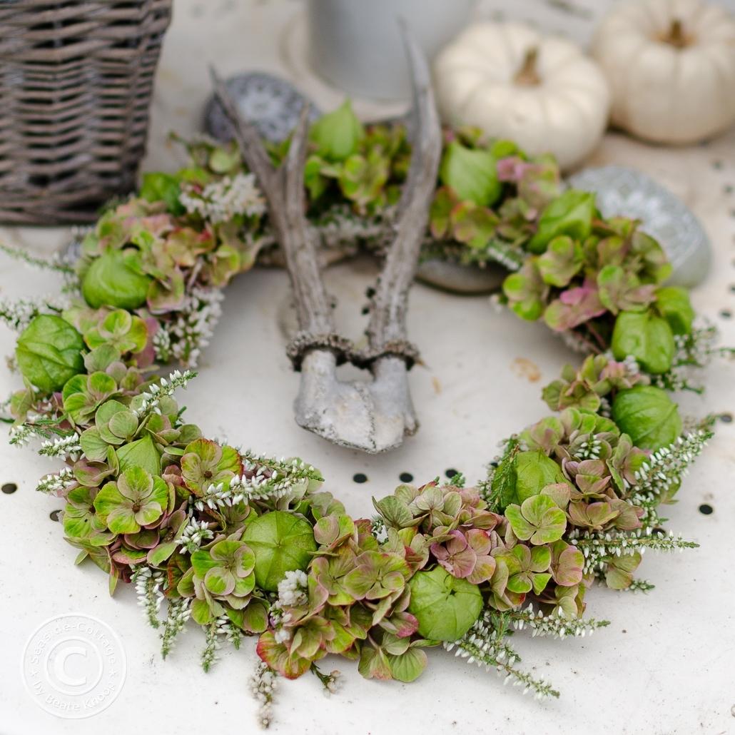 Zarter grüner Hortensienkranz