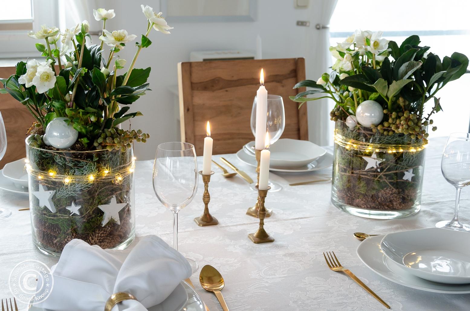 Christrosen weihnachtliche im großen Glas dekoriert