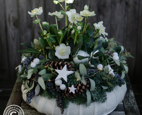 Stimmungsvoller Weihnachtskranz mit Christrosen