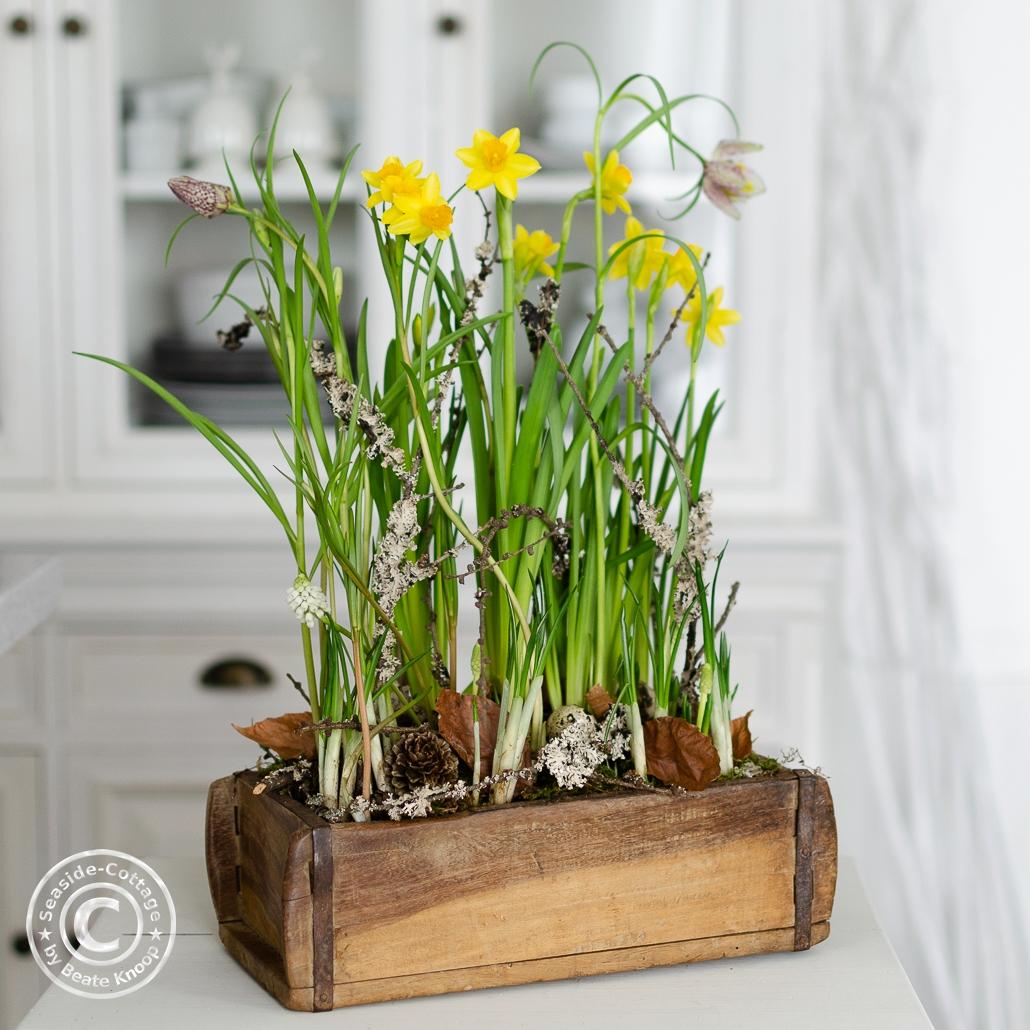 Narzissen, Schachbrettblumen und Perlhyazinthen in einer Ziegelform natürlich dekoriert mit naturnaher Bodengestaltung