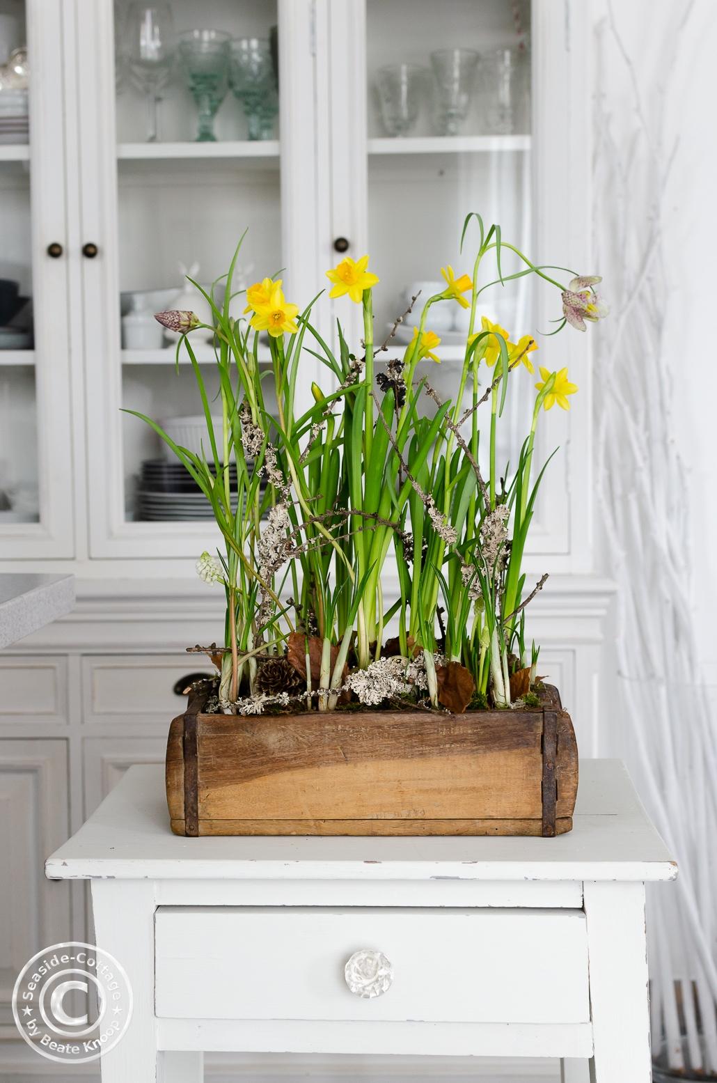 Frühlingsblumen in einer Ziegelform aus Holz vor einer weißen Vitrine