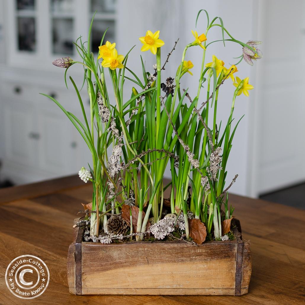 Frühlingsblumen in einer Ziegelform aus Holz mit natürlicher Dekoration
