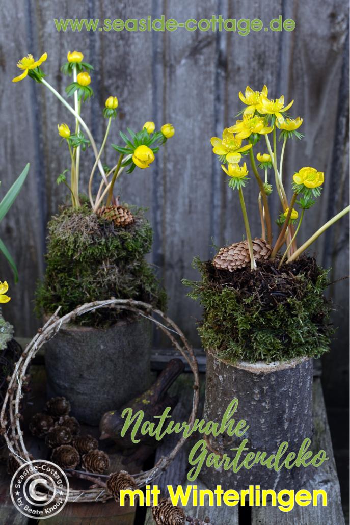 Pinterest Pin für den Blogpost über naturnahe Gartendko mit Winterlingen