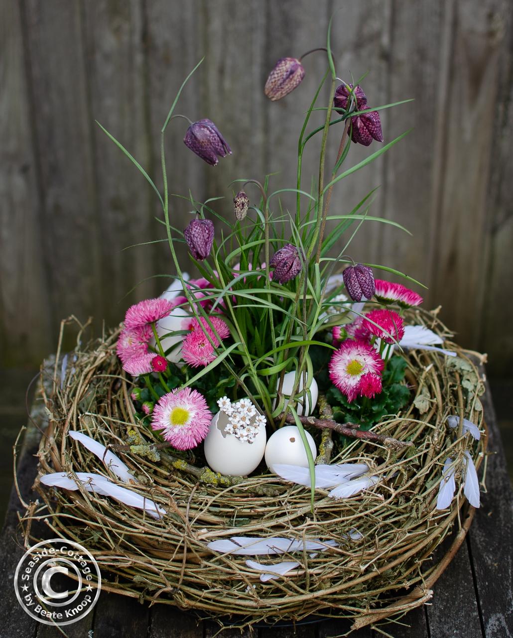 Anleitung für ein bepflanztes Osternest mit Primeln, Bellis und Schachbrettblumen