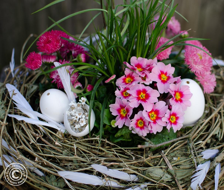 Nahaufnahme Frühlingsblumen in Rosatönen im Osternest