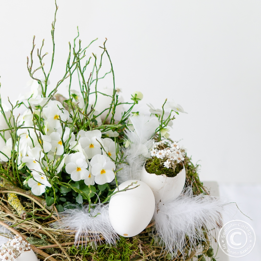 Nahaufnahme weiße Hornveilchen in ein Rebnest gepflanzt, dekoriert mit Gänseeiern, weißen Trockenblumen und Federn