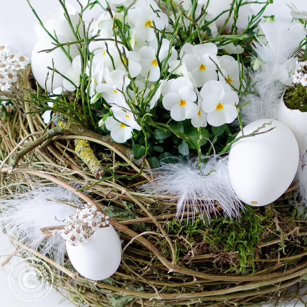 Gänseeier mit weißen Trockenblumen an einem Nest mit weißen Hornveilchen