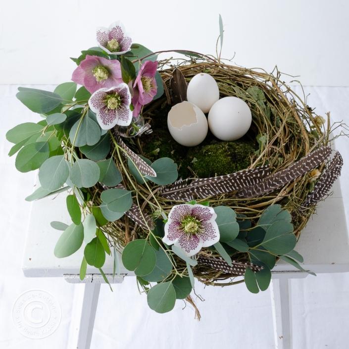 Nest aus Rebe dekoriert mit Eukalyptus, Lenzrosen und Gänseeiern