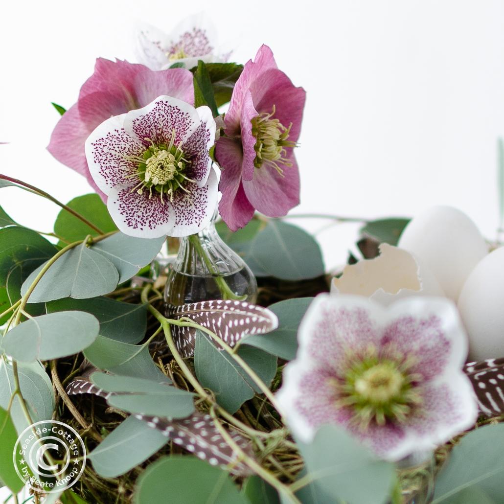Lenzrosenin kleinen Vasen mit Clip