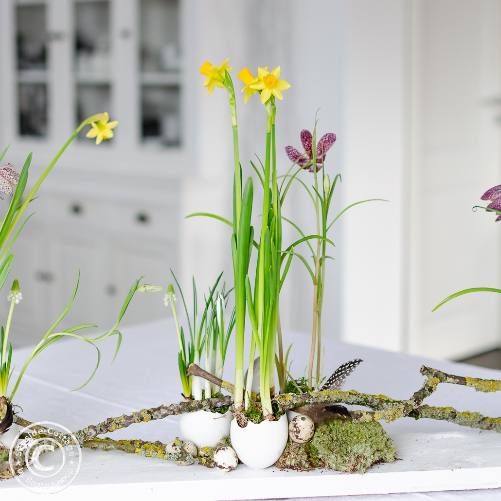 Frühlingsblumen im Gänseei für Tischdeko zu Ostern