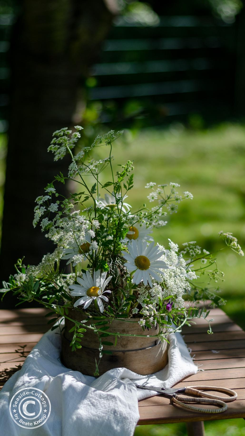 Maregeriten und Kerbel als sommerliche Blumendeko