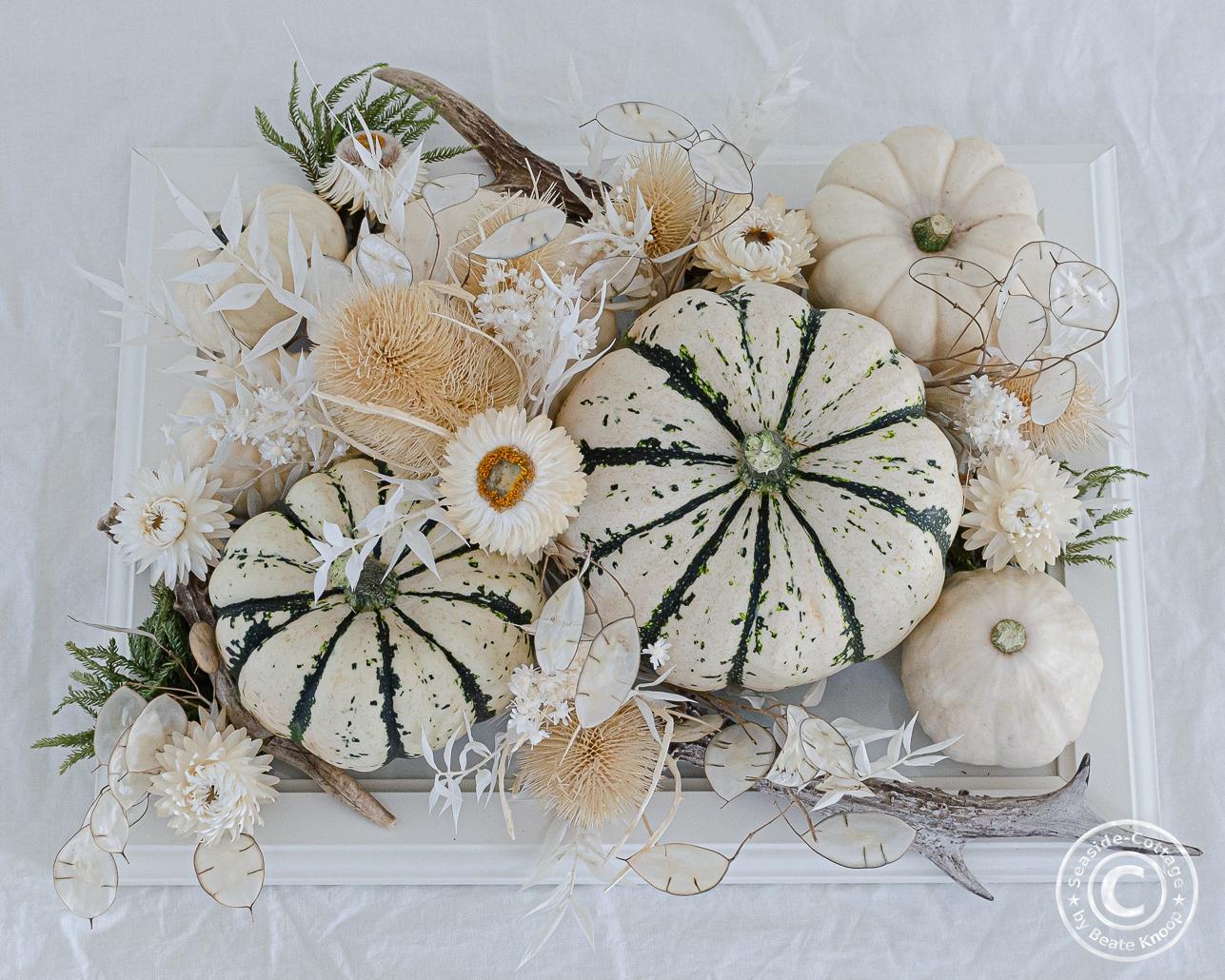 Aufsicht herbstliche Tischdeko mit weißen Kürbissen und Trockenblumen