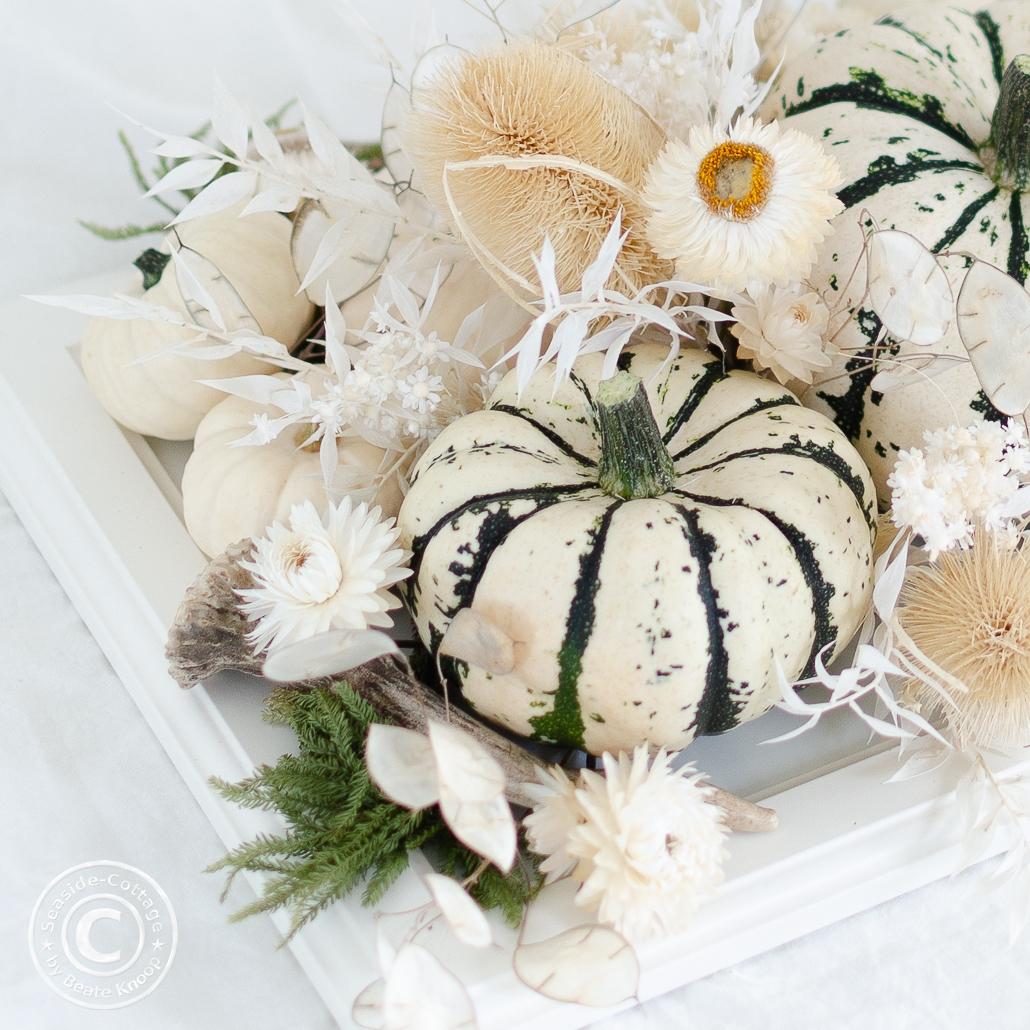 Herbstdeko für den Tisch mit Kürbissen in Weiß und Weiß-Grün und Trockenblumen