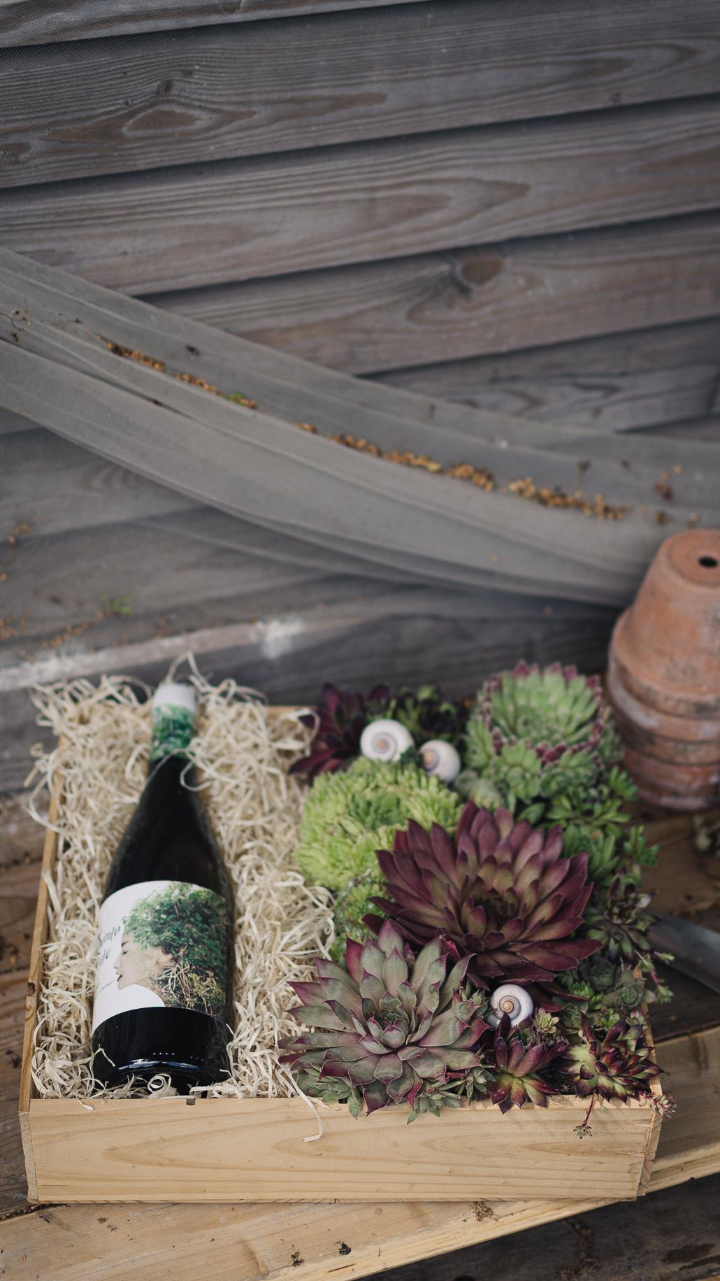 Geschenkidee für Weinlienhaber: Bepflanzte Weinkiste mit Sempervivum