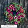 Sideau® Blumensteckziegel Anwendungsbeispiel