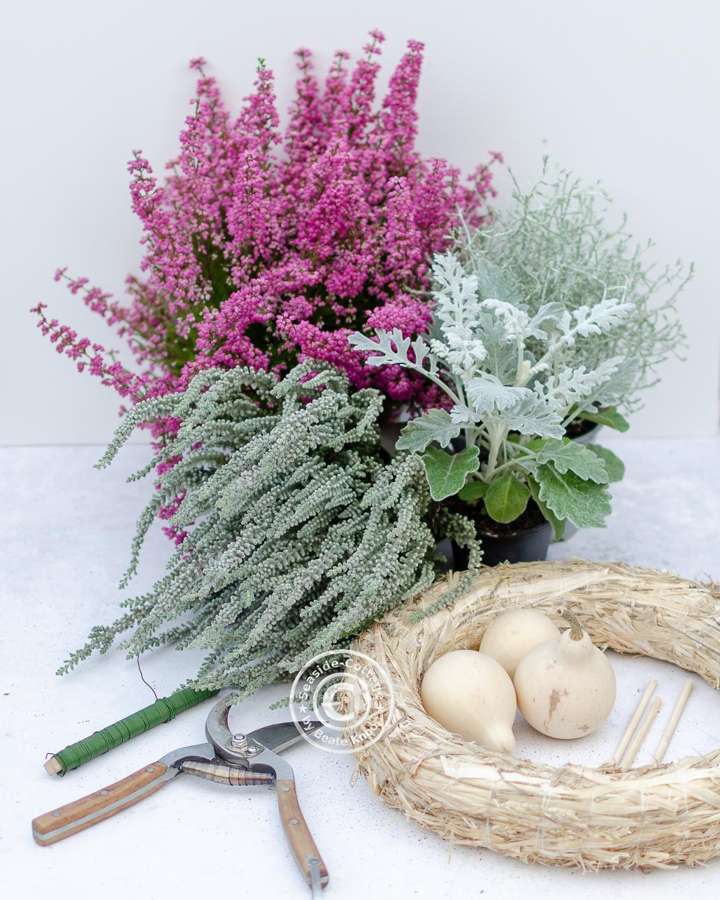 Naturmaterial für Herbstkranz mit Erica selbermachen
