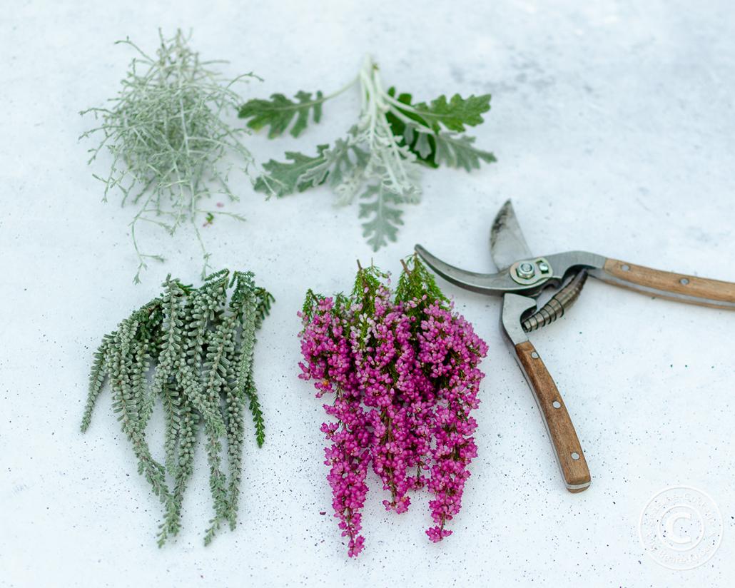 Naturmaterial vorbereiten für den Herbstkranz zum Selbermachen
